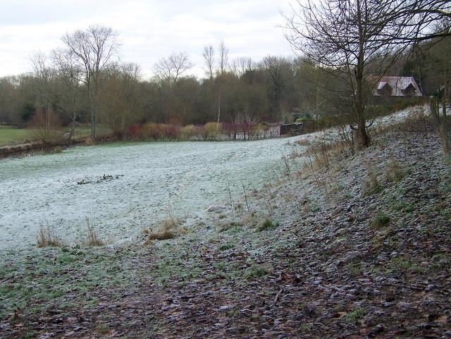 Frosty field, Gomeldon