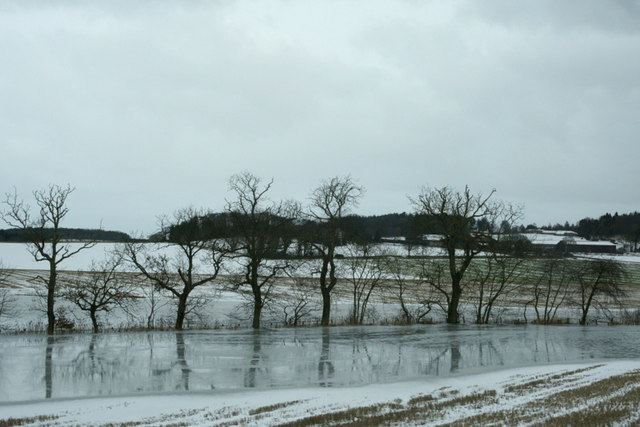 Frozen flooded field south of Newport-on-Tay