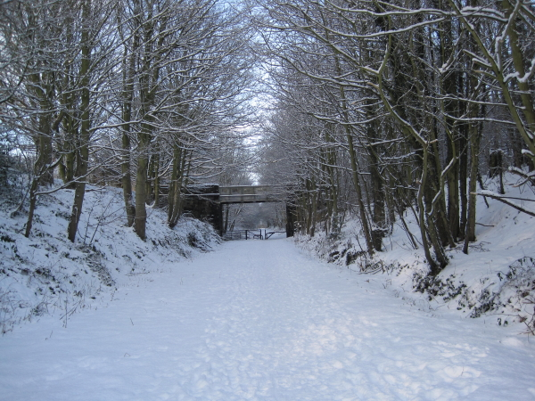 Consett to Sunderland Railway Path