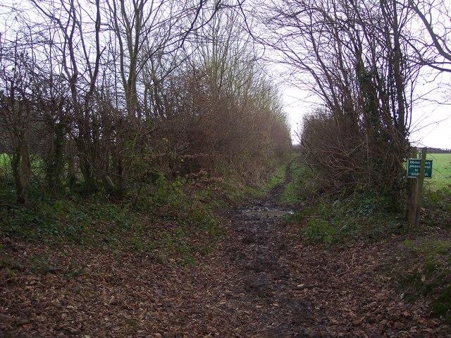 Diverted footpath near Buckholt Farm