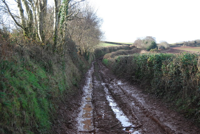 Muddy track west of Felon's Oak