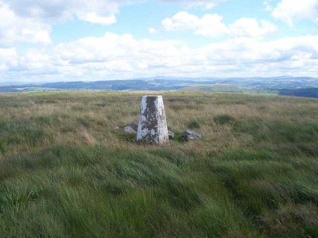 Trig Point on Mynydd Mallaen