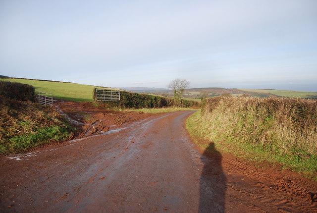 Stouts Way Lane looking North