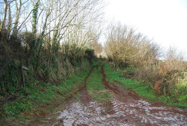 Bridleway heading west from Stouts Way Lane