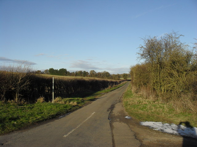 Single track road to Orchard Farm and Leafield