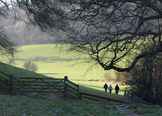 Walking down the Marlees Brook valley