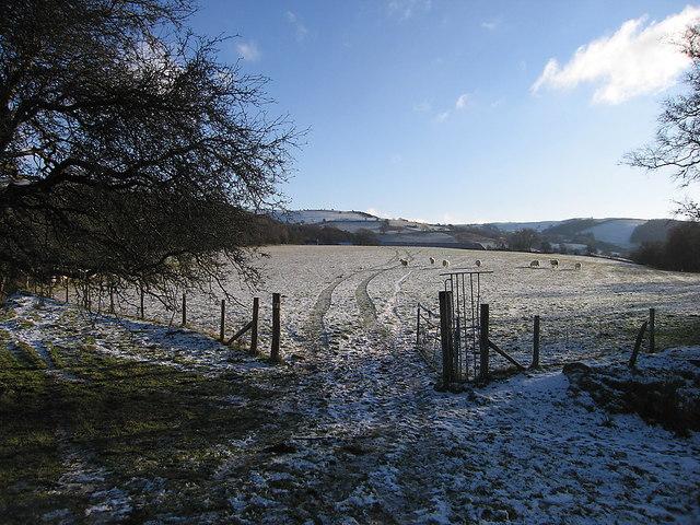 Farmland at Maes-llyn