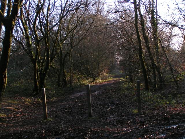 Bridleway along North Hill