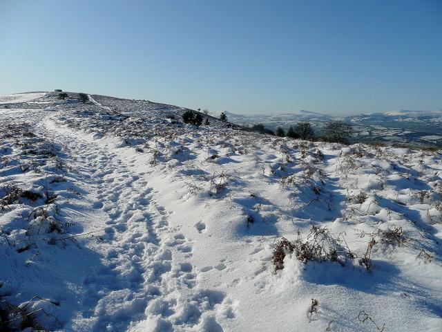 Wintery path to Garway summit