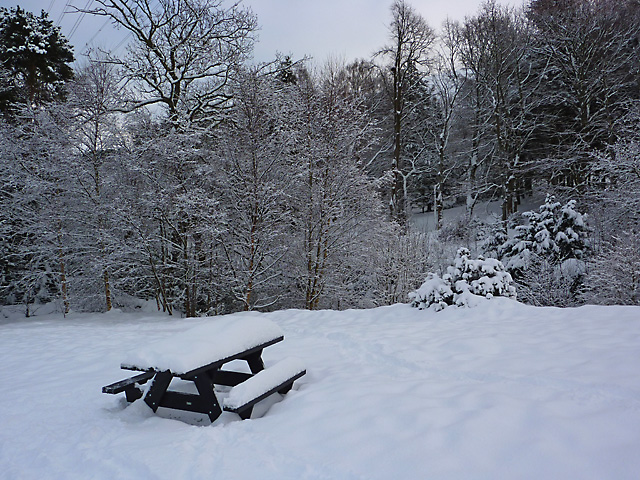 Bonaly Country Park in winter