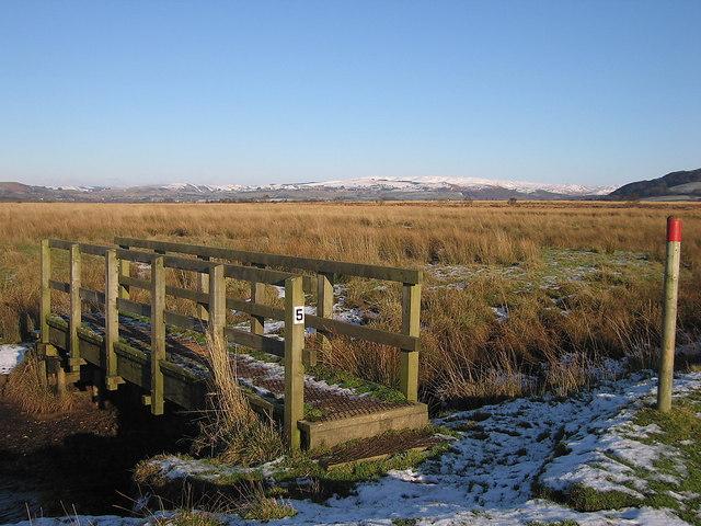 Footbridge on Riverside Walk, Cors Caron Nature Reserve