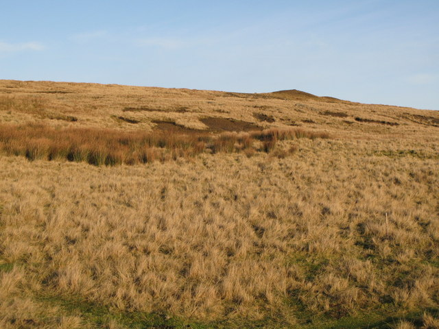 Moorland below the upper Rookhope lead smelting flue chimney (2)