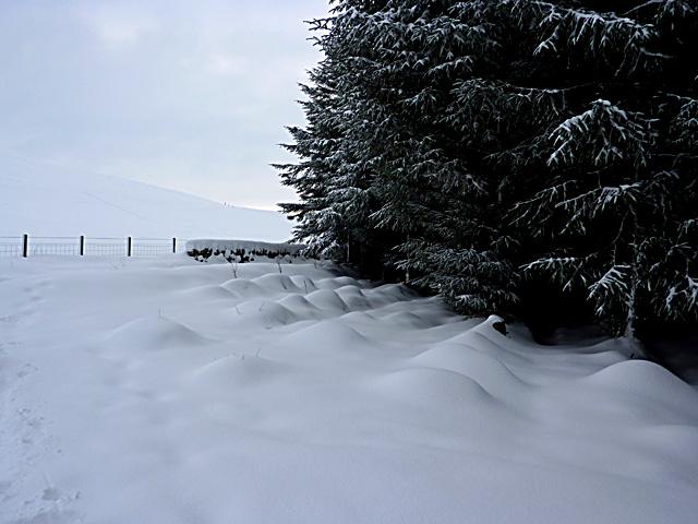 Bumpy snow