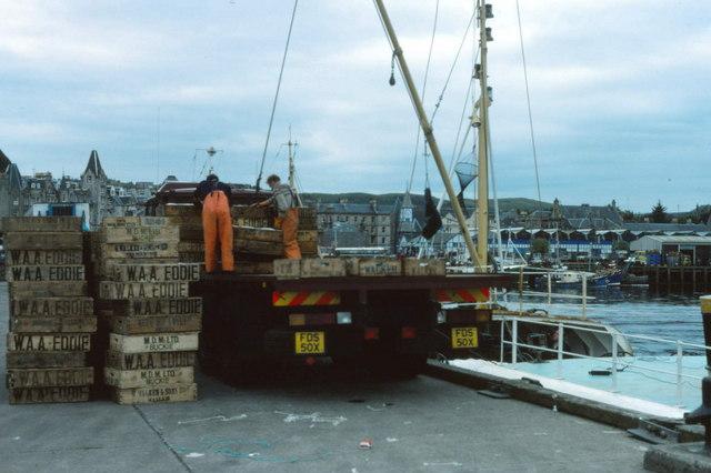 Unloading Fish at Oban Pier