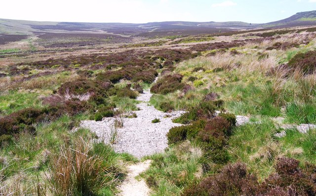 Washed out stone caused by footpath erosion