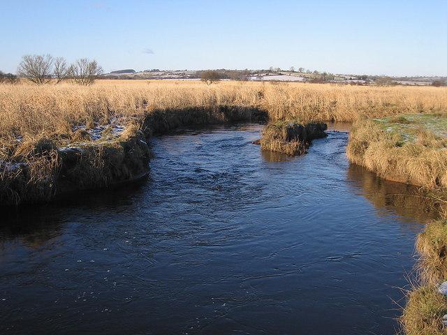 Raised bog, Afon Teifi, Cors Caron Nature Reserve