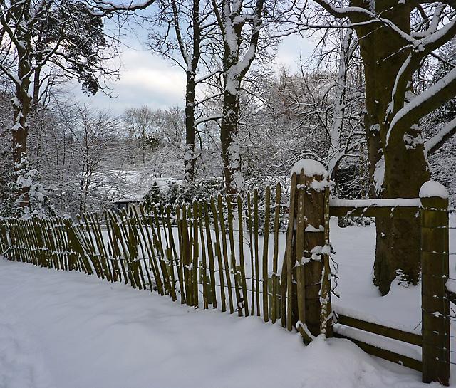 Winter at Bonaly