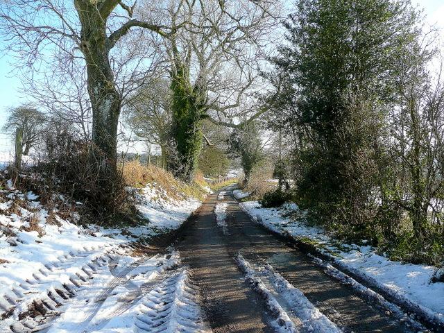 Lane from White Rocks