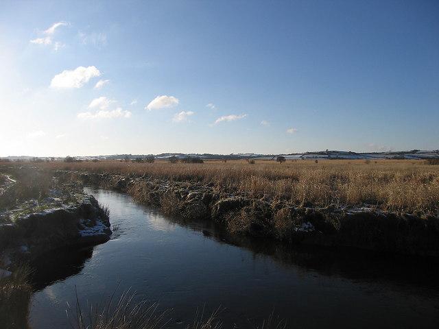 Afon Teifi, Cors Caron Nature Reserve