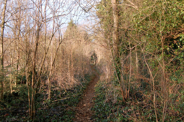 Footpath south from Staverton
