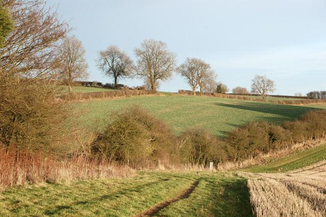 Farmland valley south of Staverton