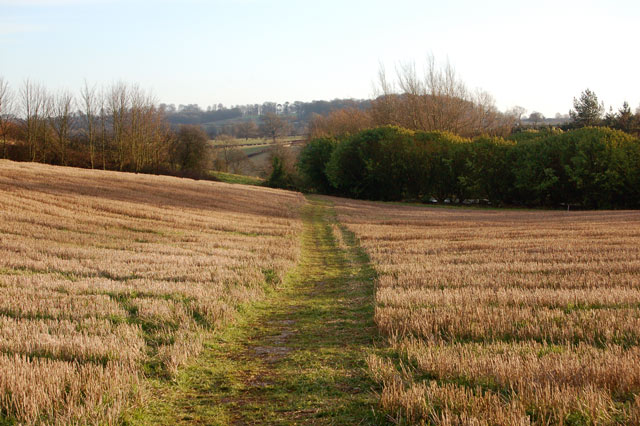 Footpath descending valley south of Staverton