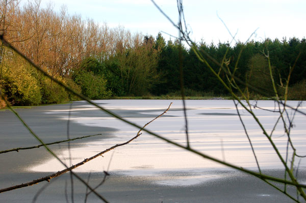 Ice-covered lake south of Staverton (1)