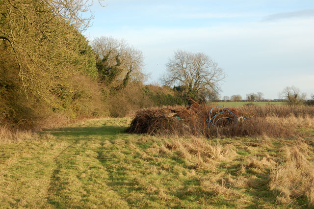 Headland and rough pasture south of Staverton