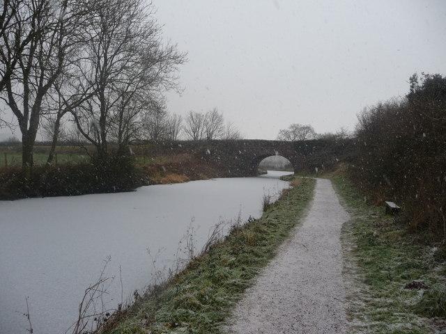 Mid Devon : The Grand Western Canal & Tiverton Road Bridge