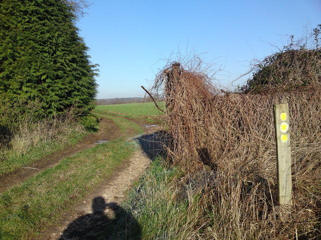 Footpath Junction Hill farm
