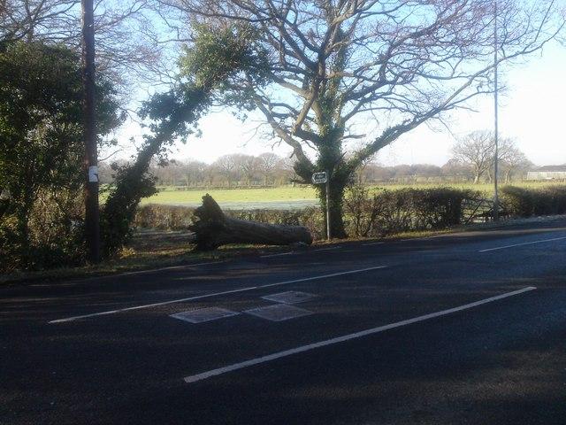 Public Footpath opposite Botley Park Hotel