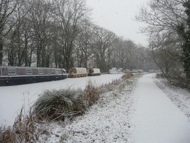 Mid Devon : The Grand Western Canal & Moorings