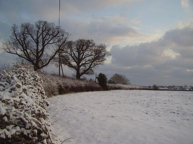 Snowed over Norfolk Landscape