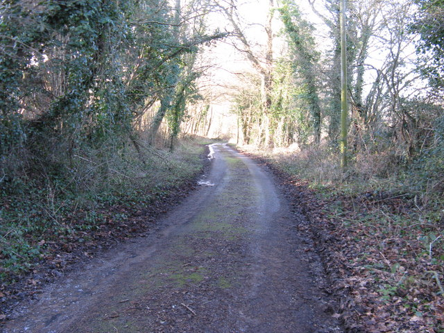 Bridleway descending to Parthings