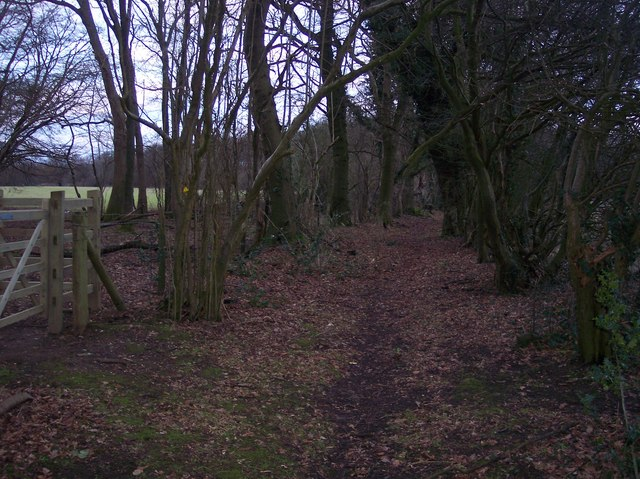 Footpath junction near Coombe Wood