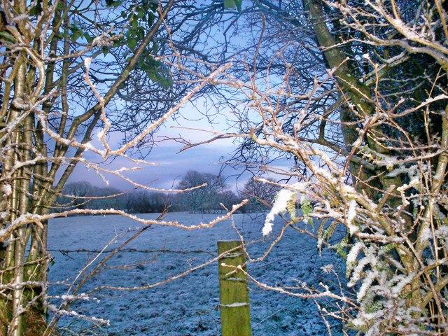 Snowy Moutnain Park, Trenewydd Lane Llanteg