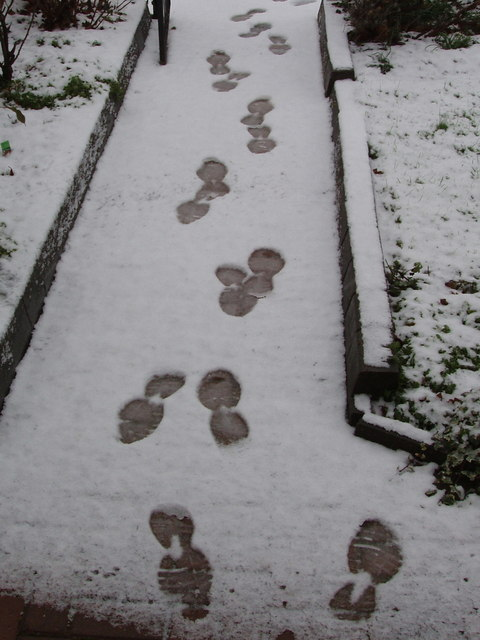 Paperboy's footsteps in the snow