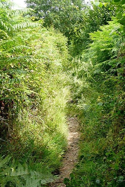 Track towards Mortimer