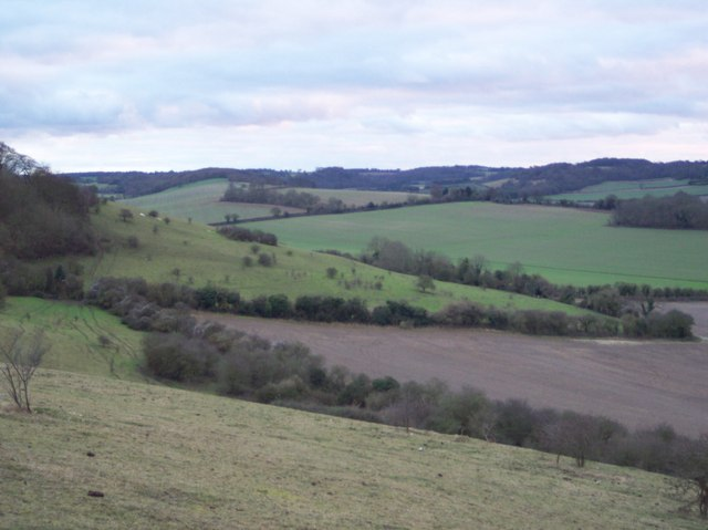 View of the Crundale Downs