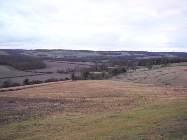 View from Eggringe Wood