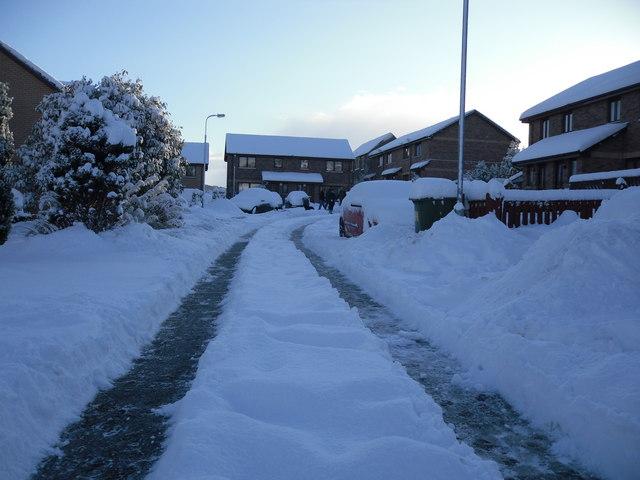 Winter in Woodlea