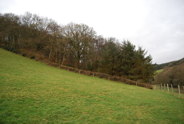 Southern edge of Perley Wood