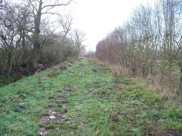 Bridleway near Stubbles.