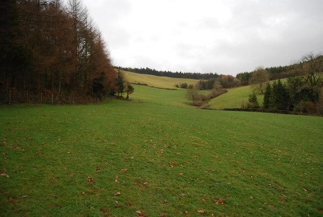 Valley between Perley Wood & Monkham Wood