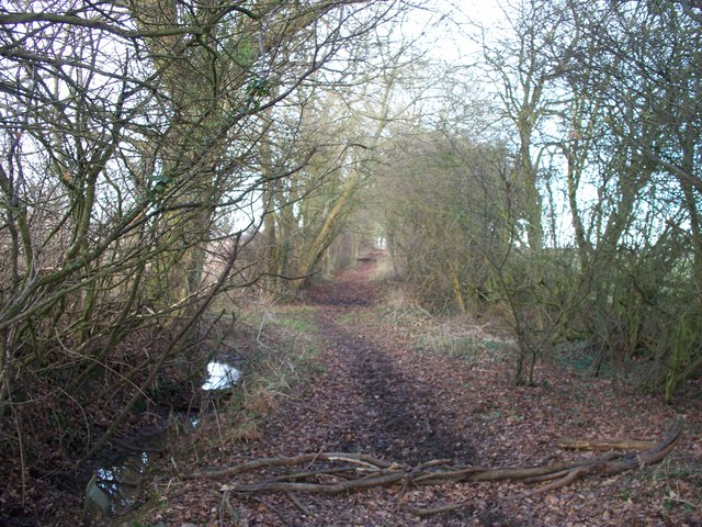 Bridleway to the Fosse Way