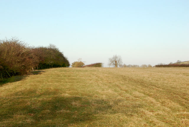 Bridleway to Onley Fields crossing a sheep pasture