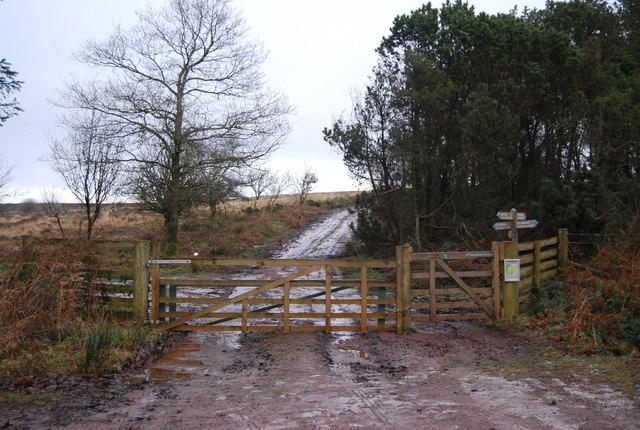 Gate on the edge of Monkham Wood