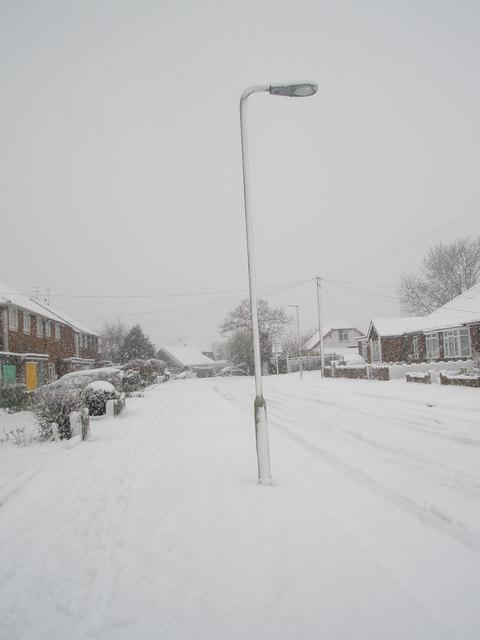 Lamppost in a snowy Hooks Lane