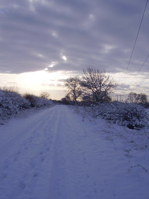 Common lane.