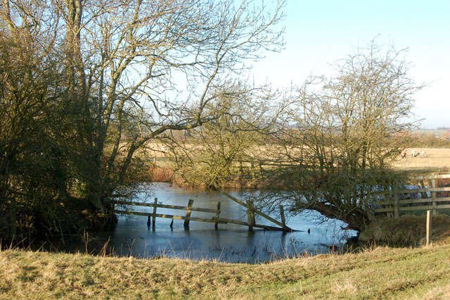 Small pond beside the bridleway to Onley Fields (2)